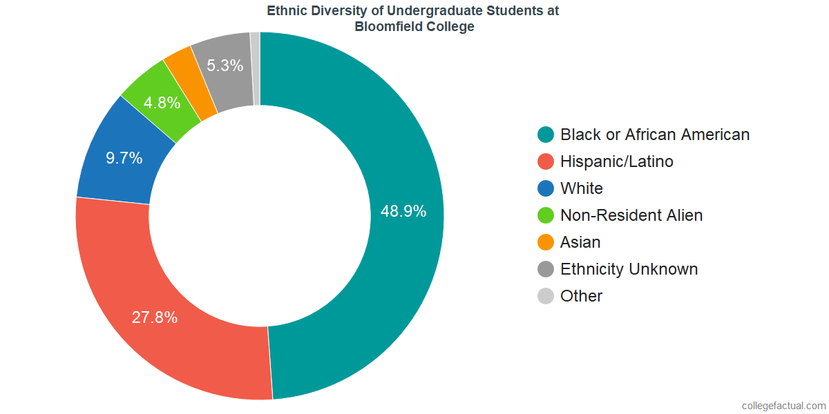 Ethnic Diversity of Undergraduates at Bloomfield College