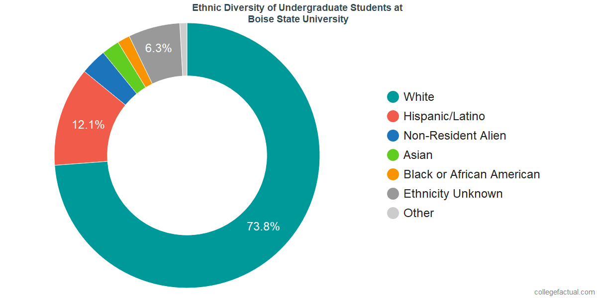 Ethnic Diversity of Undergraduates at Boise State University