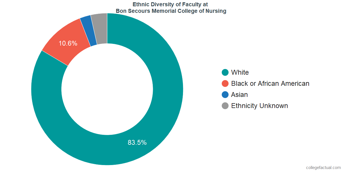 Ethnic Diversity of Faculty at Bon Secours Memorial College of Nursing