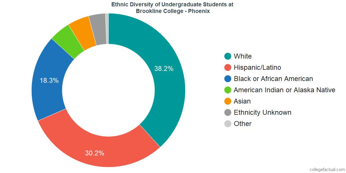 Ethnic Diversity of Undergraduates at Brookline College - Phoenix