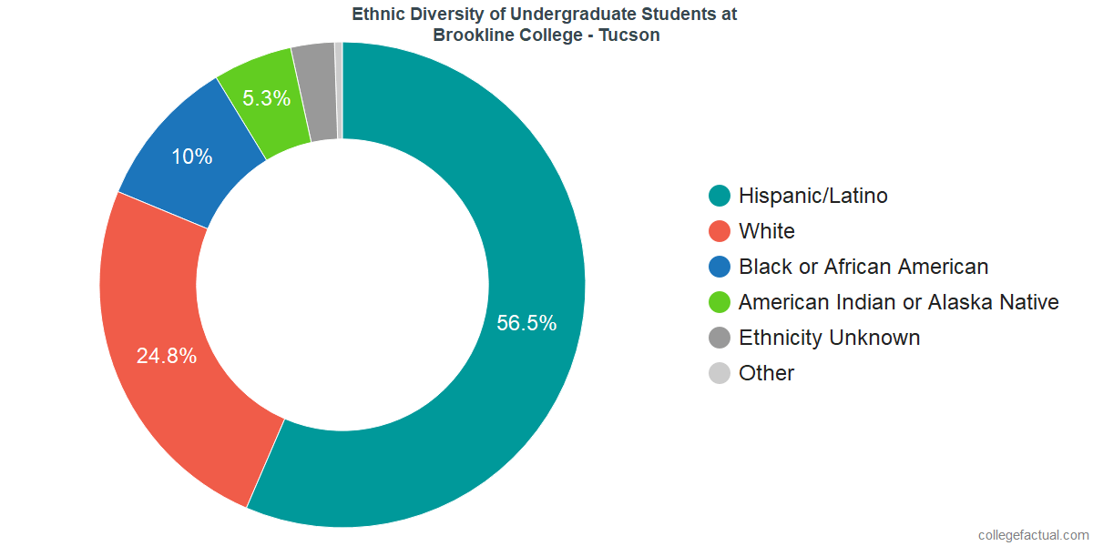 Ethnic Diversity of Undergraduates at Brookline College - Tucson
