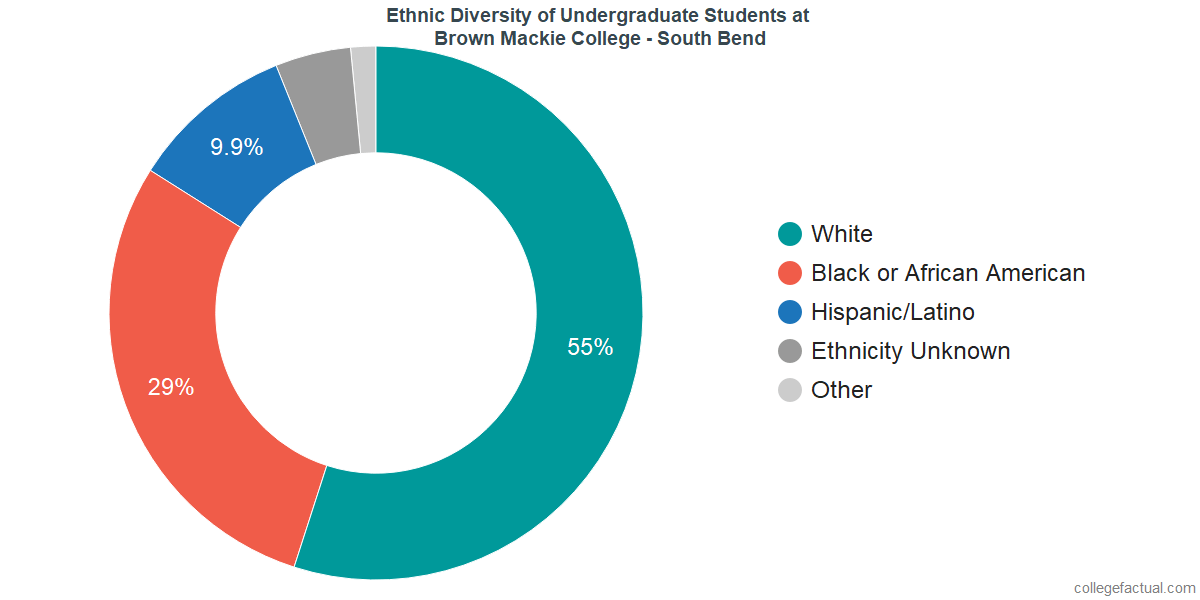 Ethnic Diversity of Undergraduates at Brown Mackie College - South Bend
