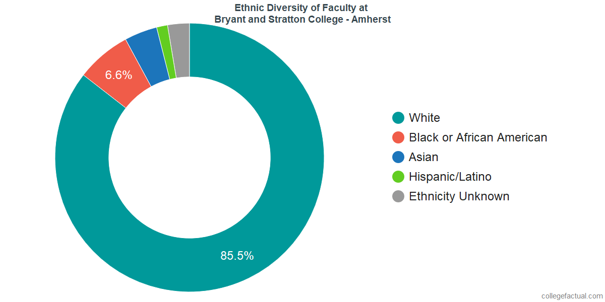 Ethnic Diversity of Faculty at Bryant and Stratton College - Amherst