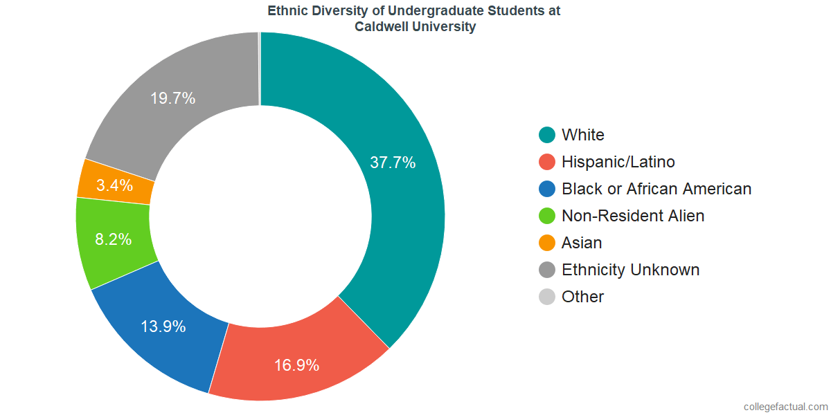 Ethnic Diversity of Undergraduates at Caldwell University