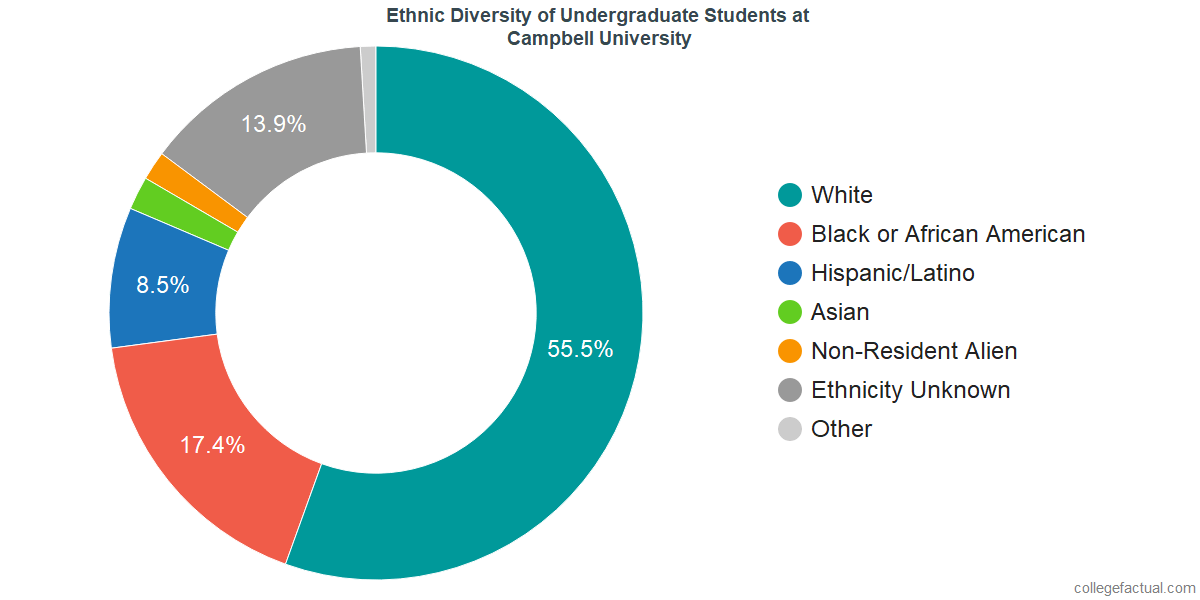 Ethnic Diversity of Undergraduates at Campbell University