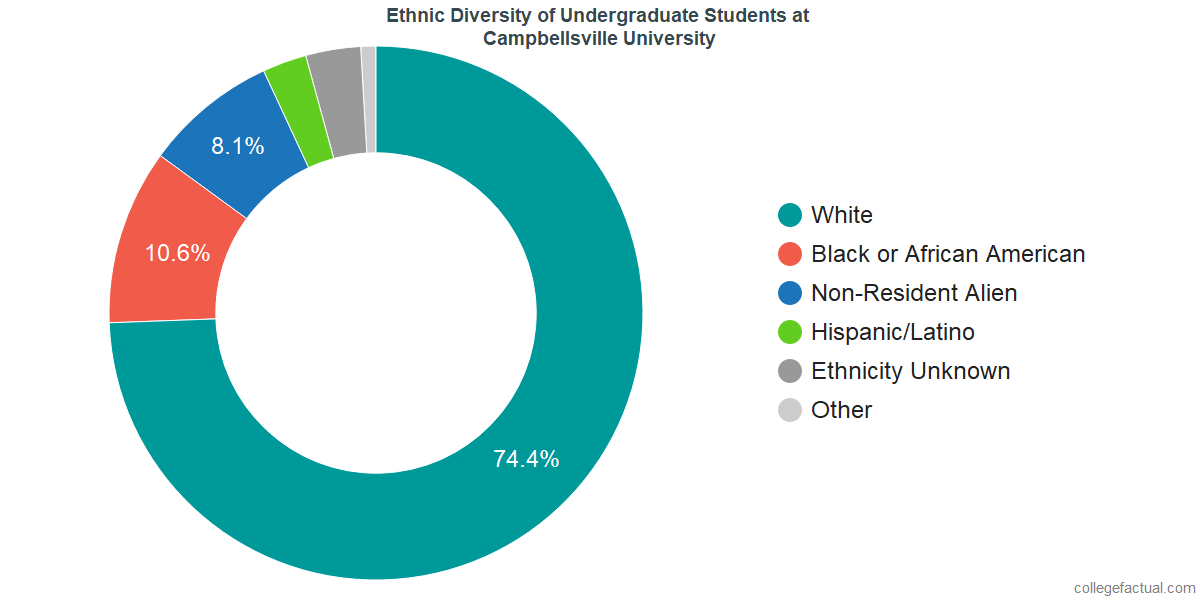 Ethnic Diversity of Undergraduates at Campbellsville University