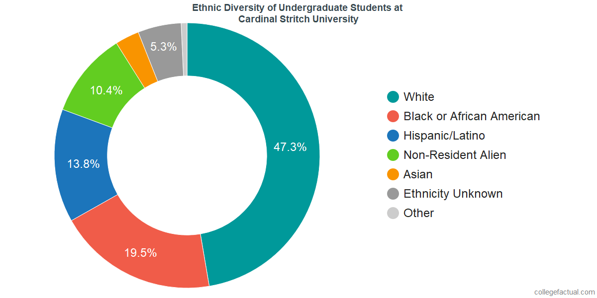 Ethnic Diversity of Undergraduates at Cardinal Stritch University