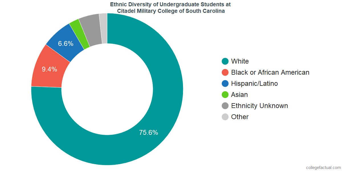 Ethnic Diversity of Undergraduates at Citadel Military College of South Carolina