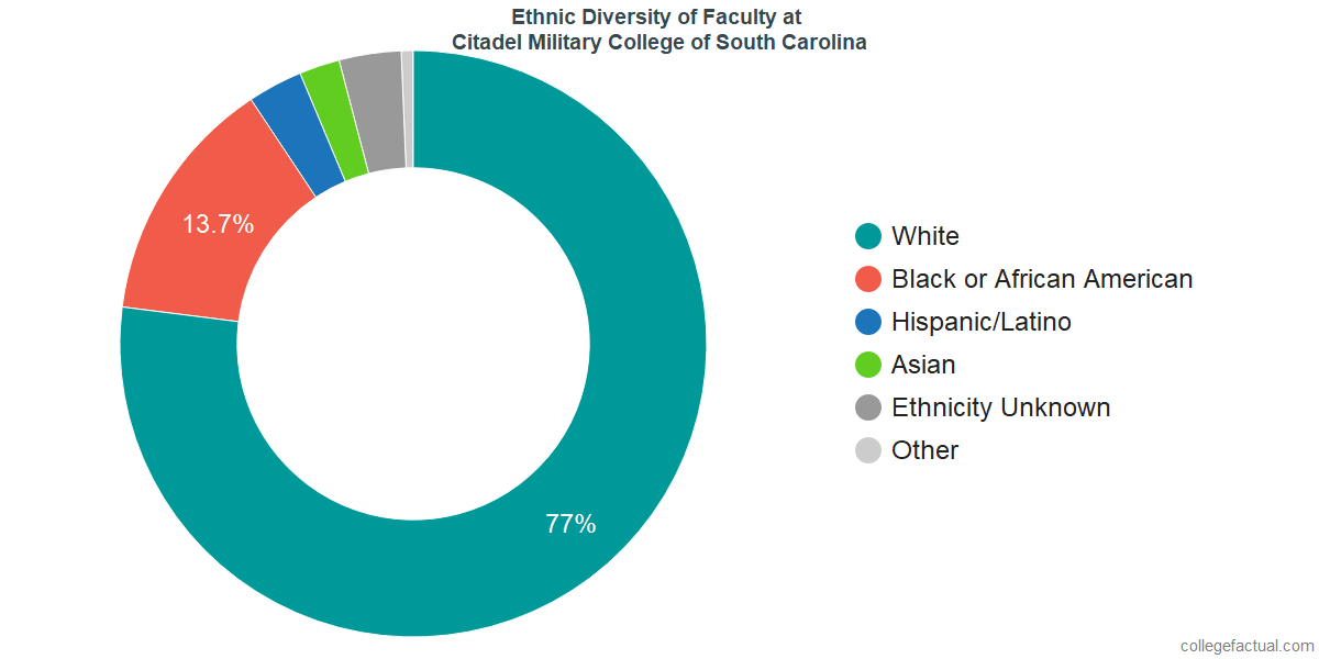 Ethnic Diversity of Faculty at Citadel Military College of South Carolina