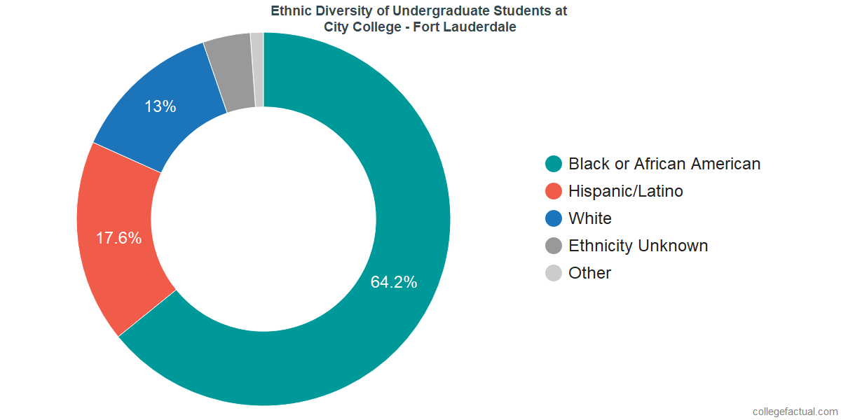 Ethnic Diversity of Undergraduates at City College - Fort Lauderdale