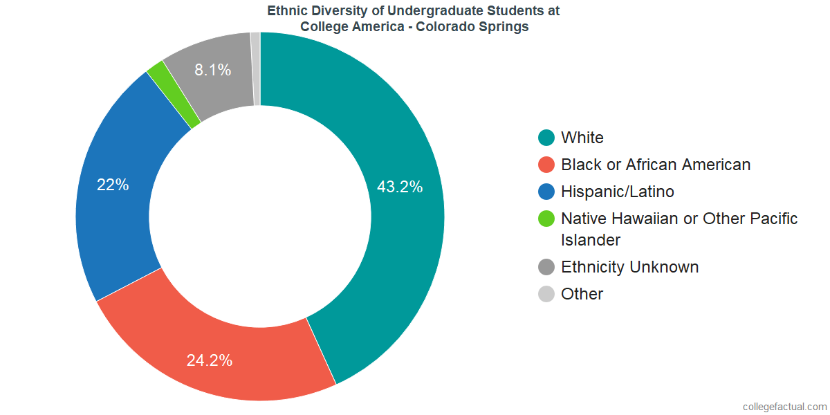Ethnic Diversity of Undergraduates at CollegeAmerica - Colorado Springs