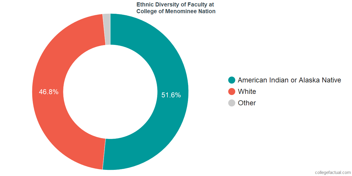 Ethnic Diversity of Faculty at College of Menominee Nation