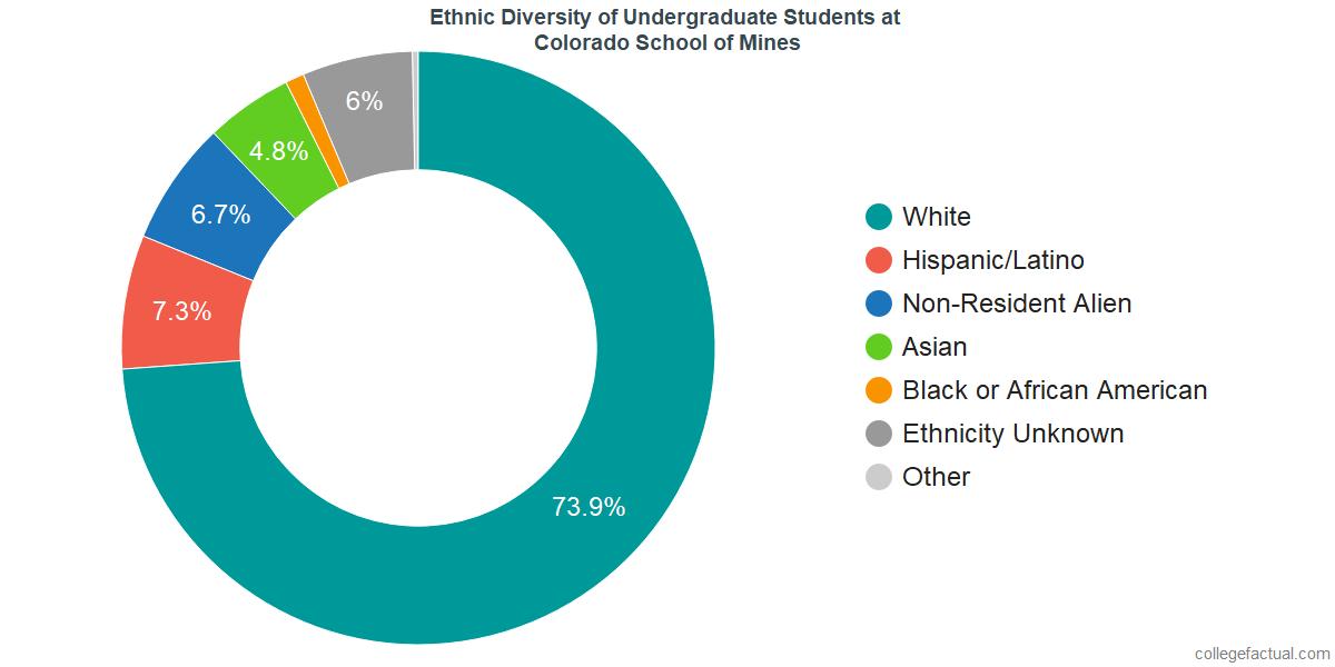Ethnic Diversity of Undergraduates at Colorado School of Mines