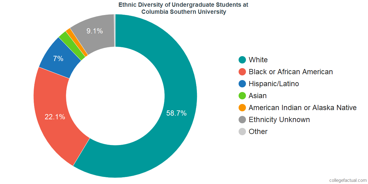 Ethnic Diversity of Undergraduates at Columbia Southern University