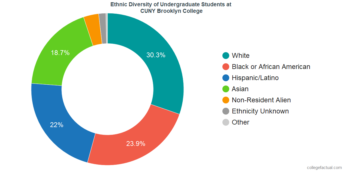 Ethnic Diversity of Undergraduates at CUNY Brooklyn College