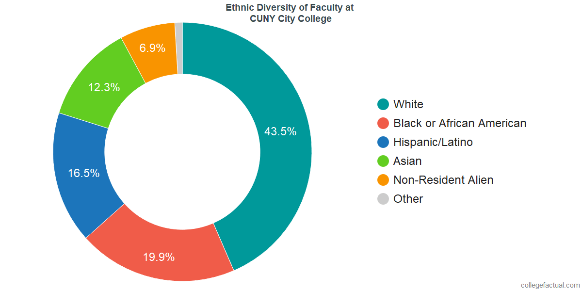 Ethnic Diversity of Faculty at CUNY City College