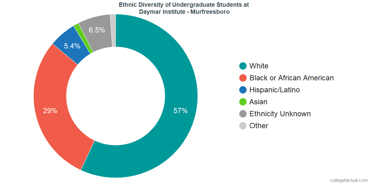 Ethnic Diversity of Undergraduates at Daymar College - Murfreesboro