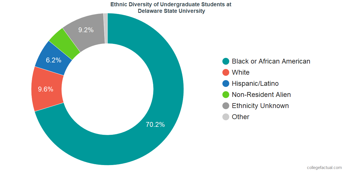 Ethnic Diversity of Undergraduates at Delaware State University
