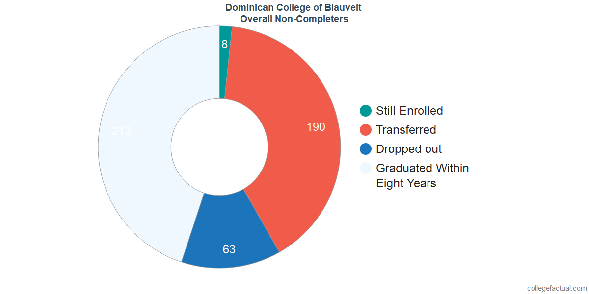 outcomes for students who failed to graduate from Dominican College of Blauvelt