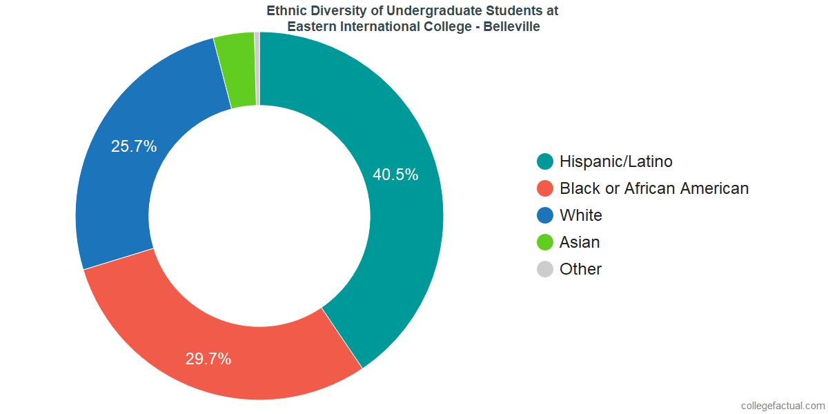Ethnic Diversity of Undergraduates at Eastern International College - Belleville
