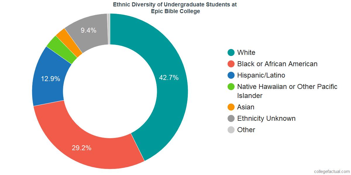 Ethnic Diversity of Undergraduates at Epic Bible College