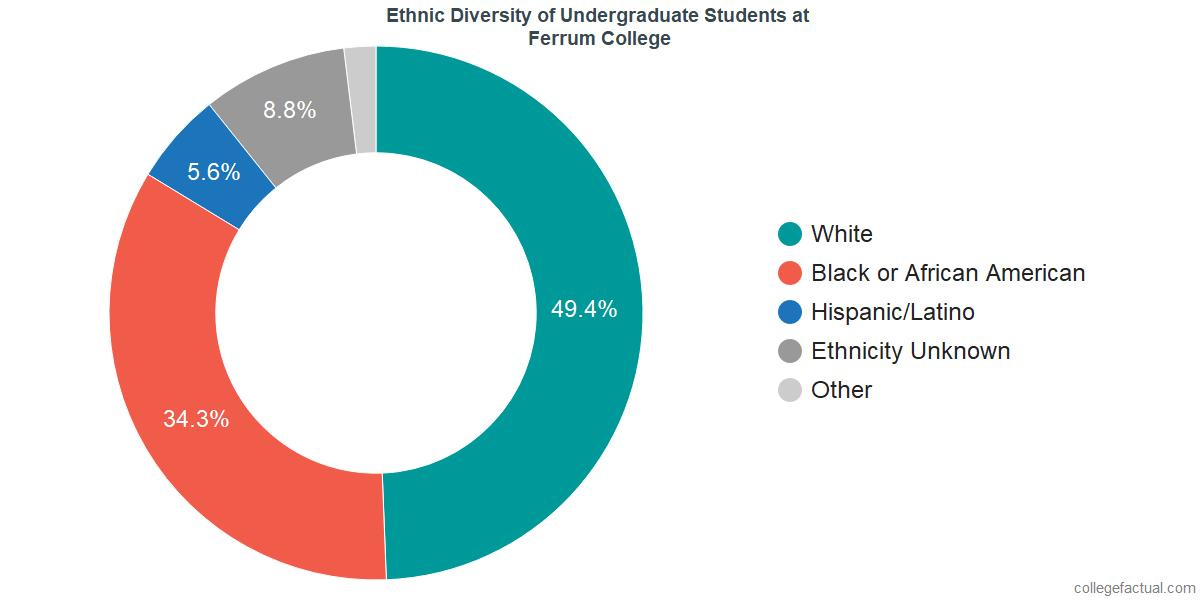 Ethnic Diversity of Undergraduates at Ferrum College