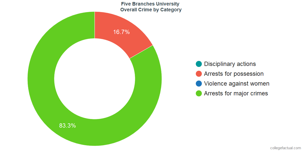 Overall Crime and Safety Incidents at Five Branches University by Category