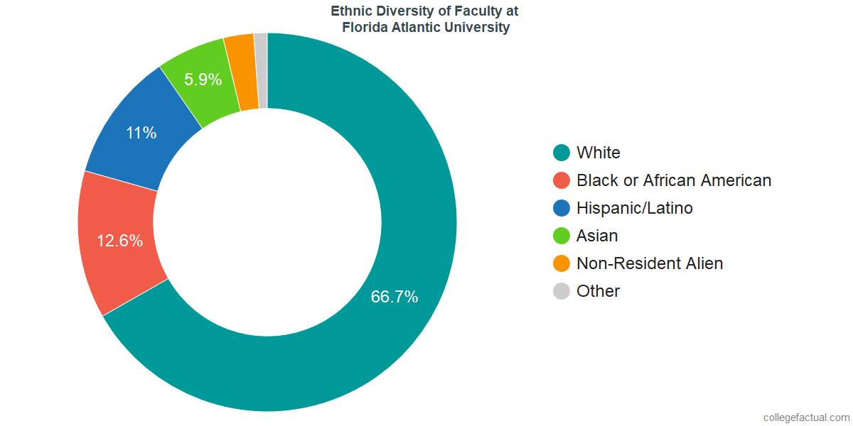 Ethnic Diversity of Faculty at Florida Atlantic University