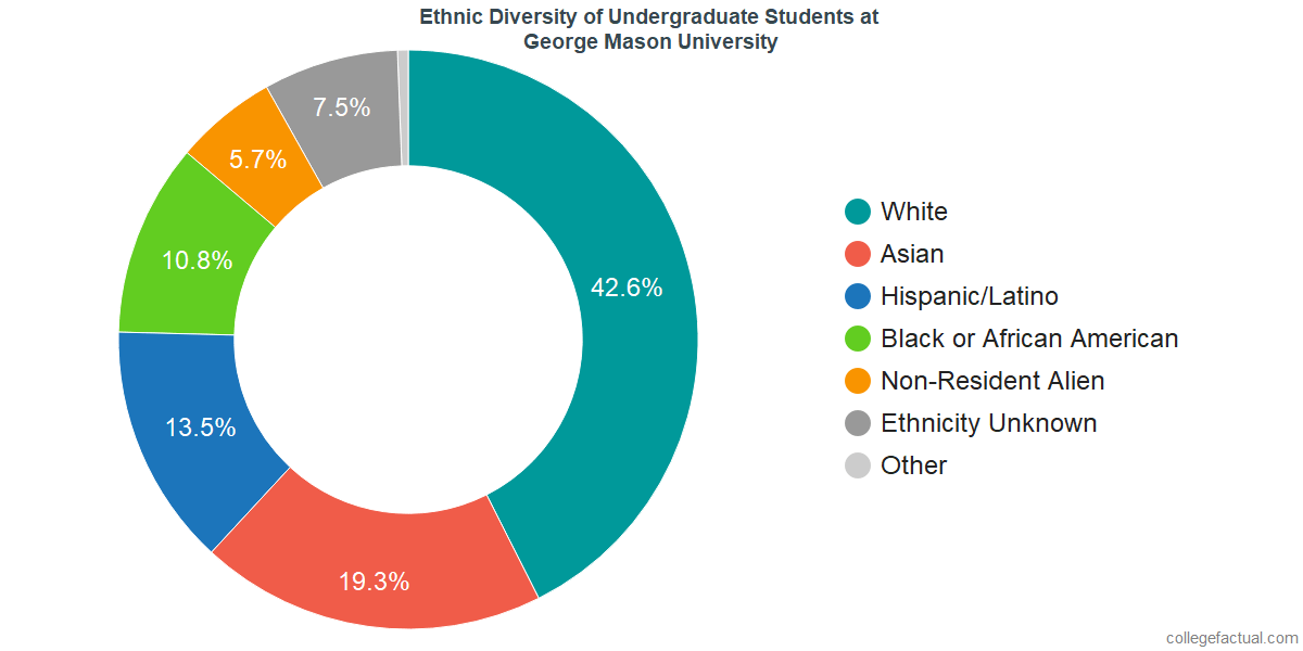 Ethnic Diversity of Undergraduates at George Mason University