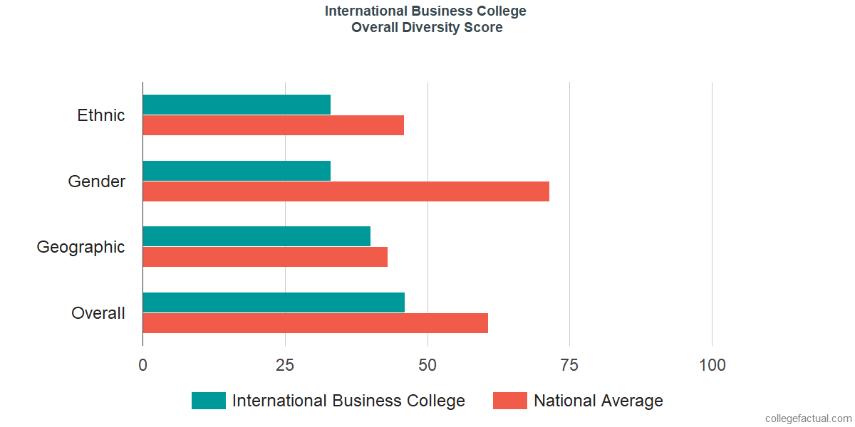 Overall Diversity at International Business College