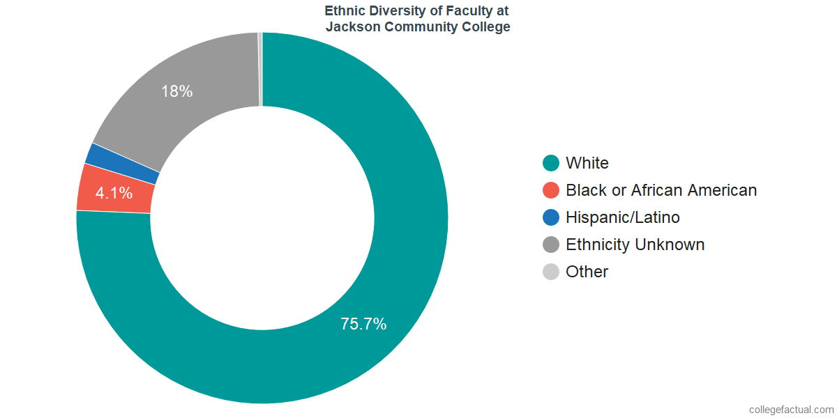 Ethnic Diversity of Faculty at Jackson College