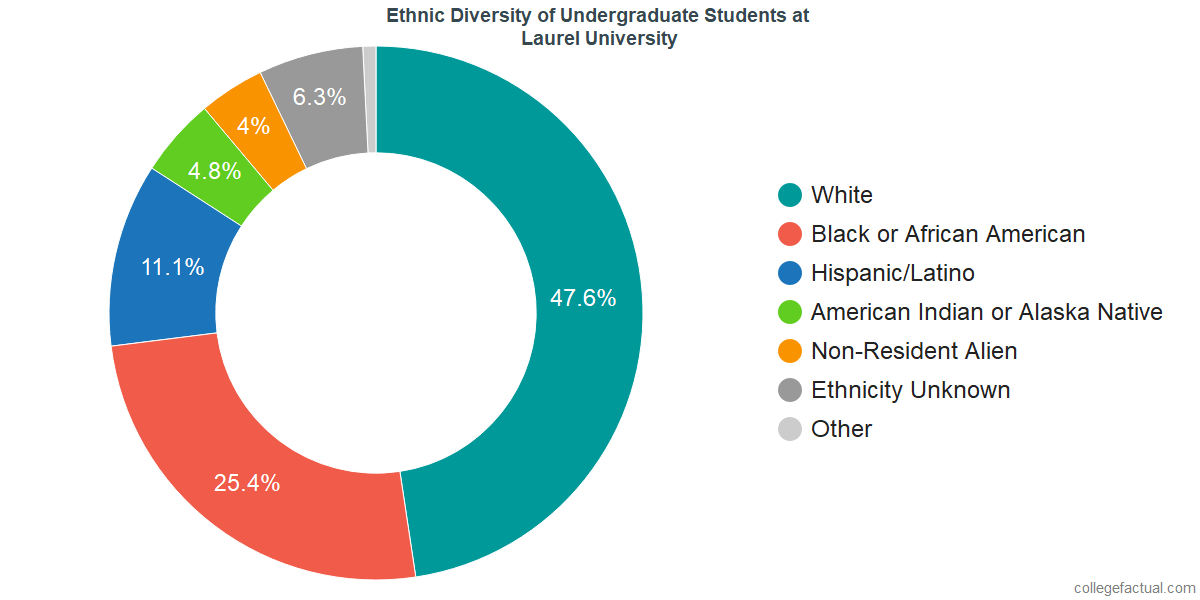 Ethnic Diversity of Undergraduates at John Wesley University