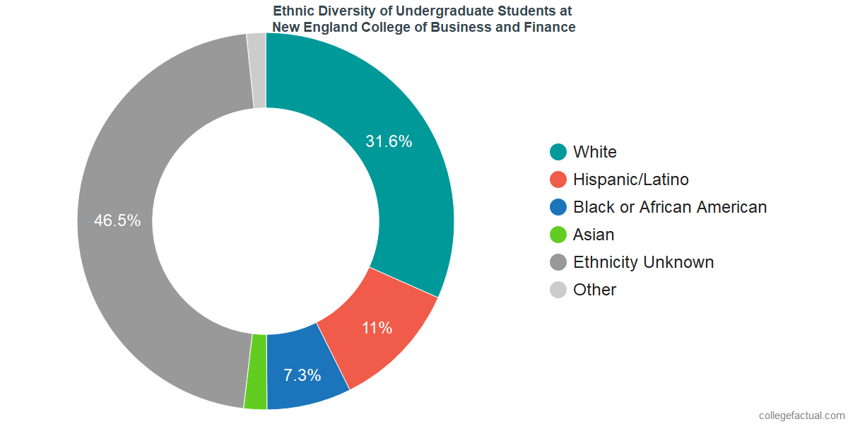 Ethnic Diversity of Undergraduates at New England College of Business and Finance