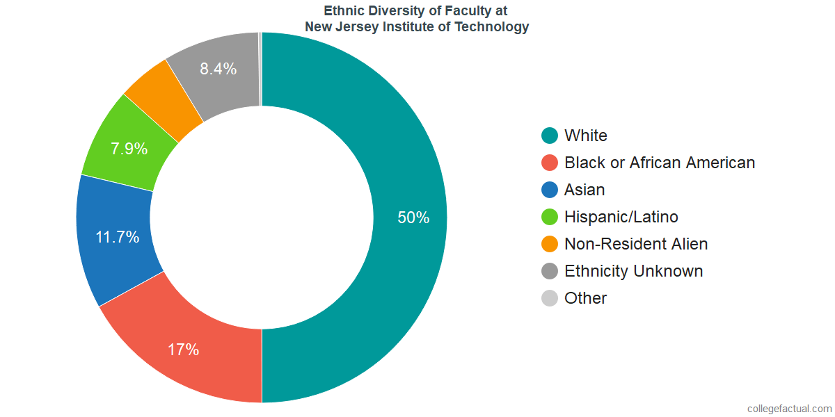 Ethnic Diversity of Faculty at New Jersey Institute of Technology