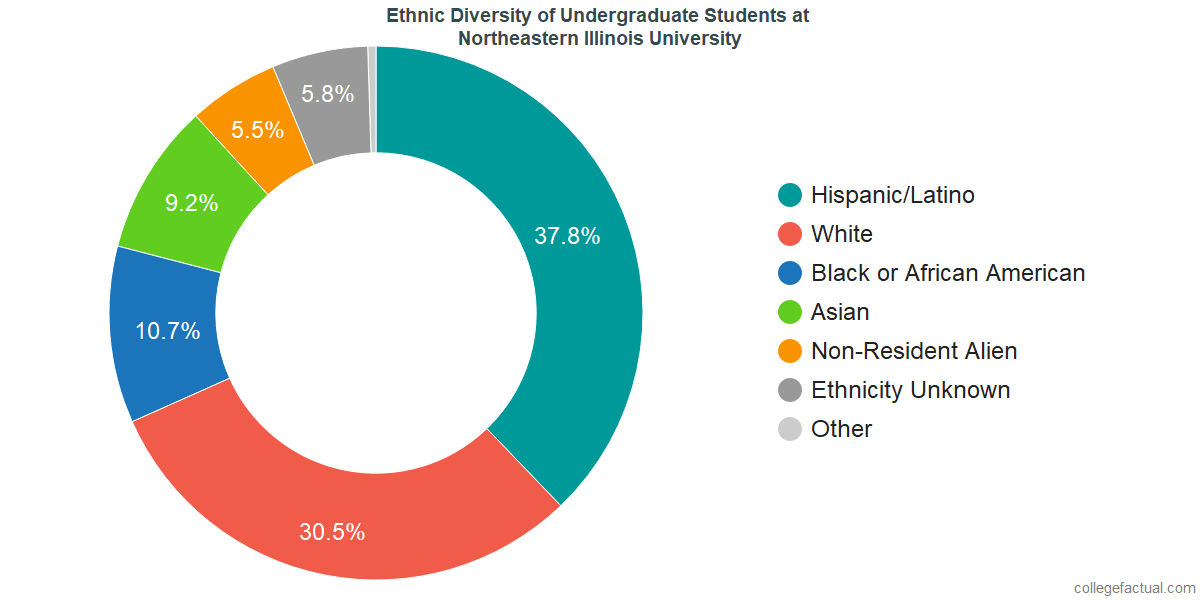 Ethnic Diversity of Undergraduates at Northeastern Illinois University
