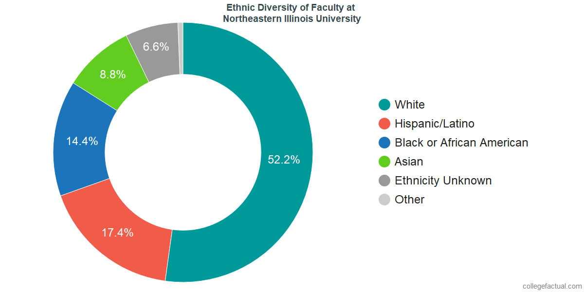 Ethnic Diversity of Faculty at Northeastern Illinois University