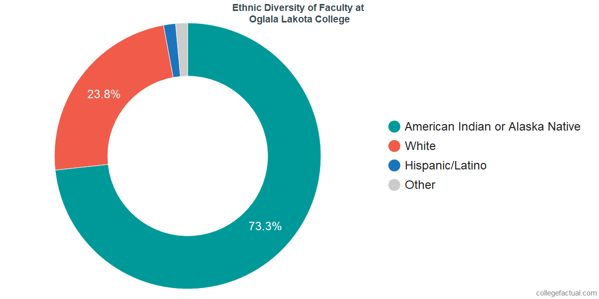 Ethnic Diversity of Faculty at Oglala Lakota College