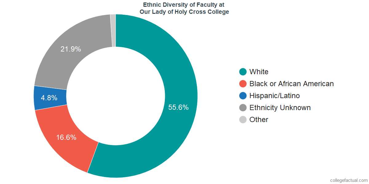 Ethnic Diversity of Faculty at University of Holy Cross