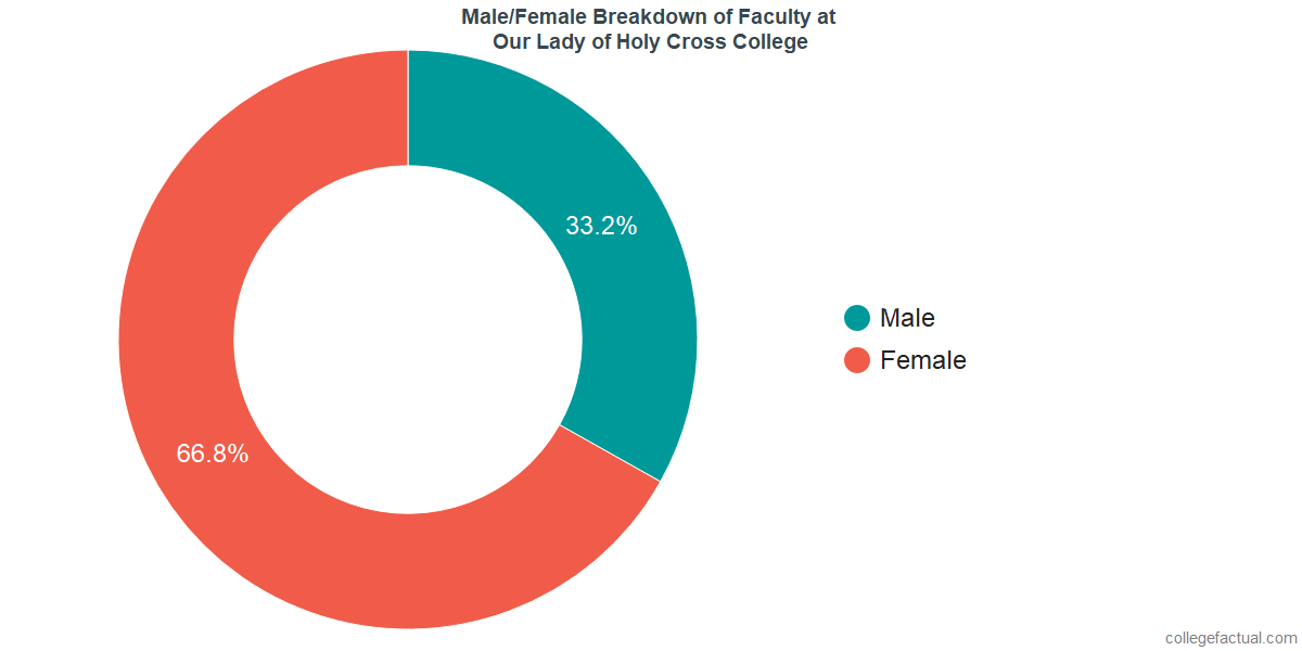 Male/Female Diversity of Faculty at University of Holy Cross