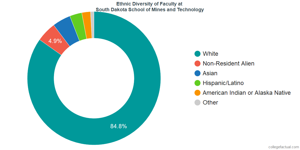 Ethnic Diversity of Faculty at South Dakota School of Mines and Technology