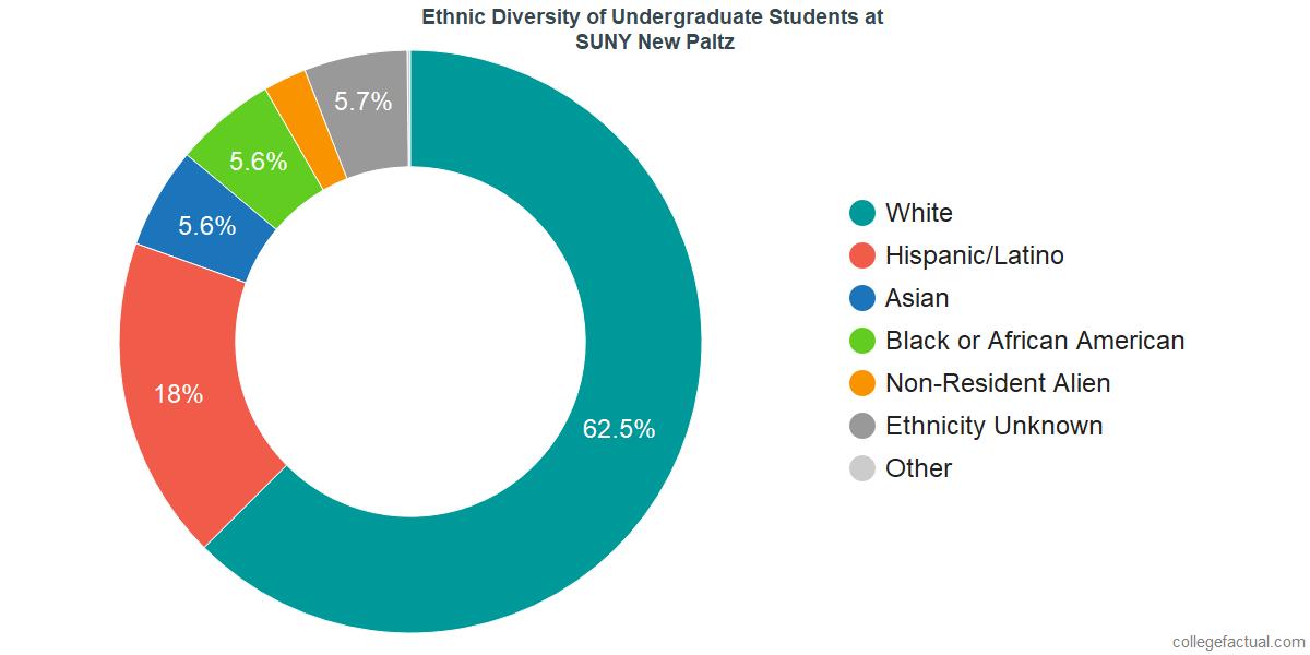 Ethnic Diversity of Undergraduates at SUNY New Paltz