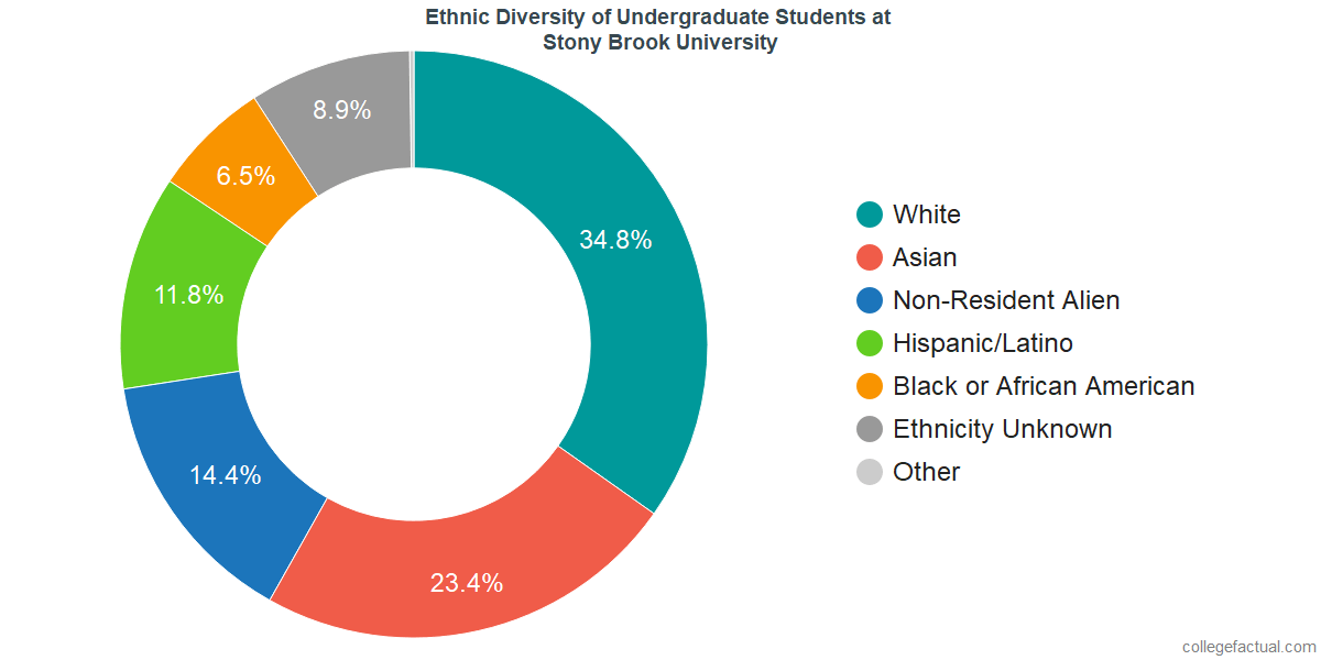 Ethnic Diversity of Undergraduates at Stony Brook University