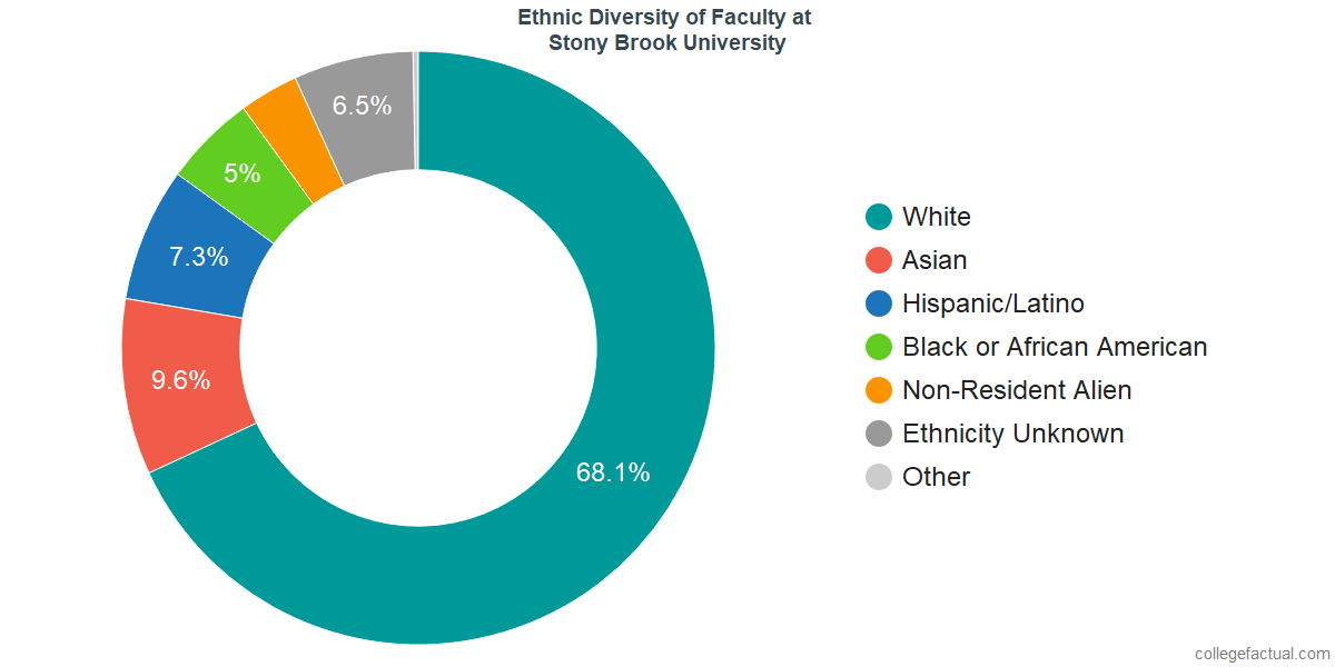 Ethnic Diversity of Faculty at Stony Brook University
