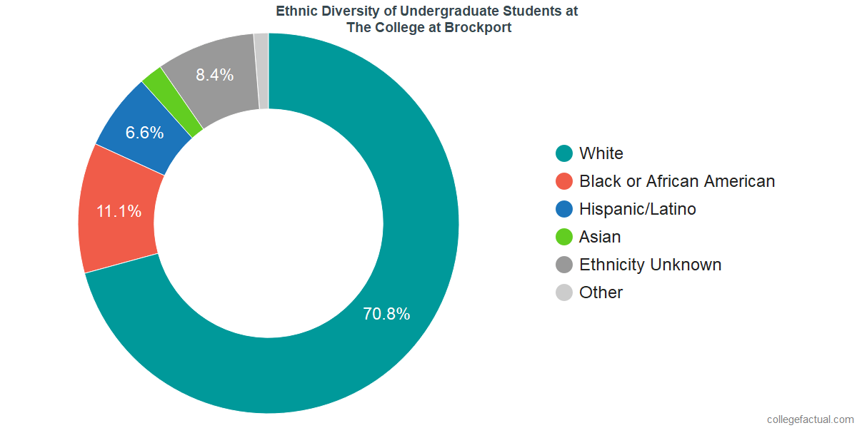 Ethnic Diversity of Undergraduates at The College at Brockport