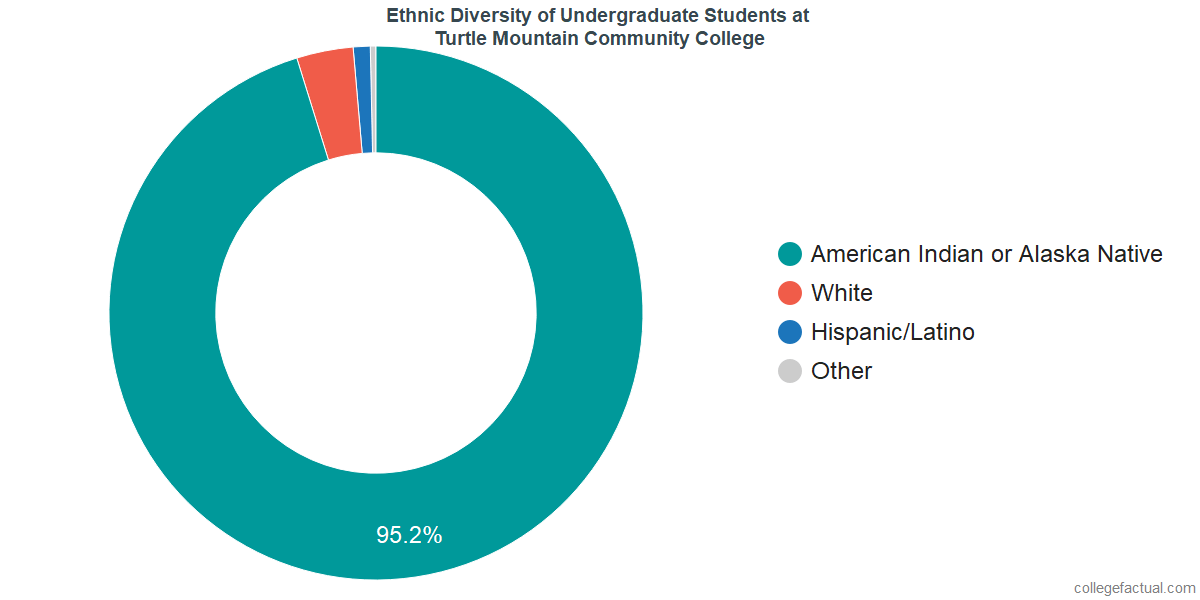 Ethnic Diversity of Undergraduates at Turtle Mountain Community College