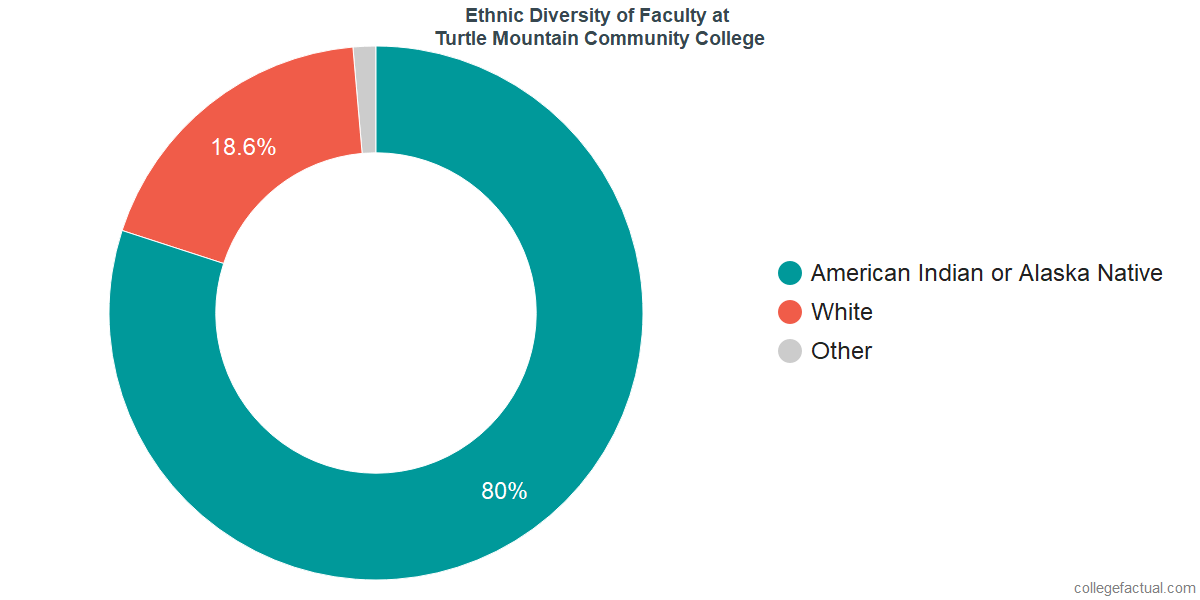 Ethnic Diversity of Faculty at Turtle Mountain Community College
