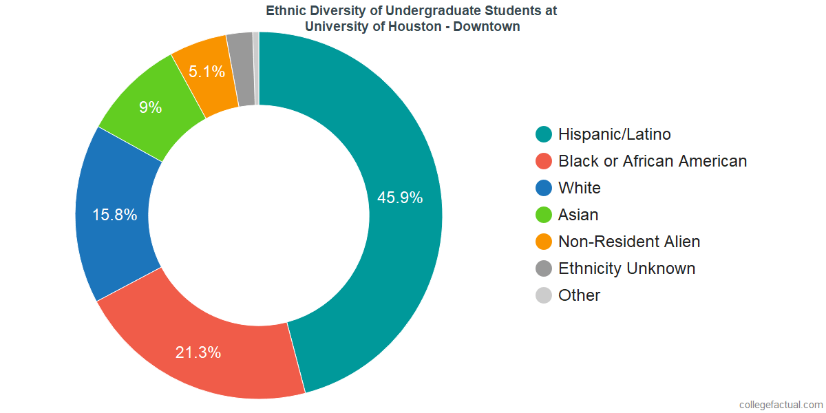 Ethnic Diversity of Undergraduates at University of Houston - Downtown
