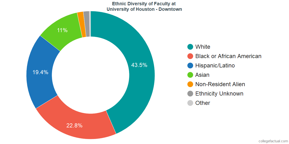Ethnic Diversity of Faculty at University of Houston - Downtown