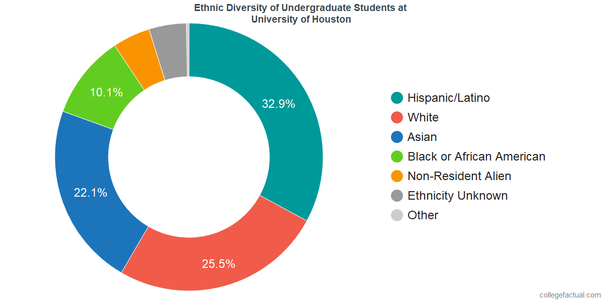 Ethnic Diversity of Undergraduates at University of Houston