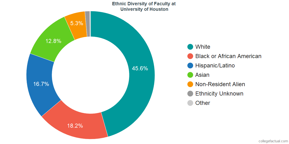 Ethnic Diversity of Faculty at University of Houston
